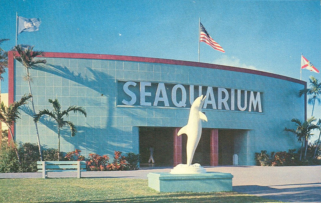 ... visitors and locals can spend a simmering day at the Miami Seaquarium